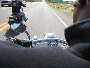 My view on back of Harley